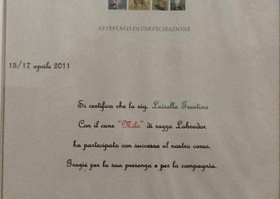 addestramento_chocoland_image-13