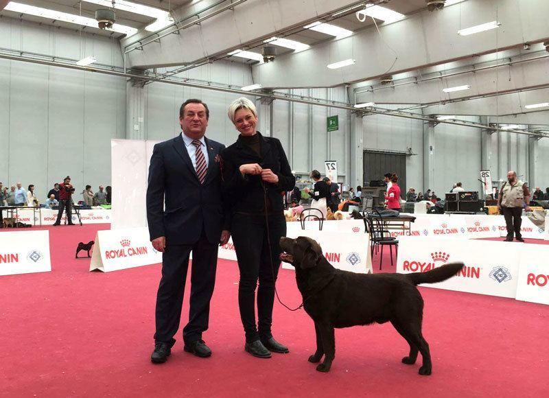 Qualifica al Crufts 2017 per Mozart!